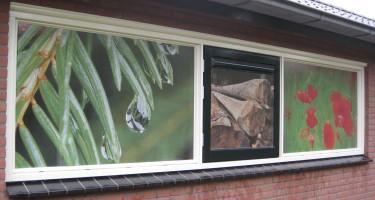 raamdecoratie folie op de ruiten tegen inkijk of warmte